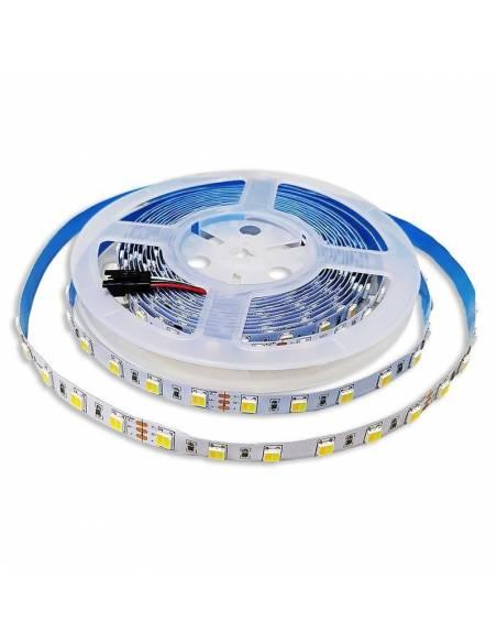 Tira de LED 24V, 5050 C+N+F, 60 LED/metro, IP20 DUAL COLOR.